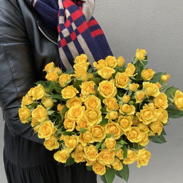 Rozes-dzeltenas krūmrozes-40 cm