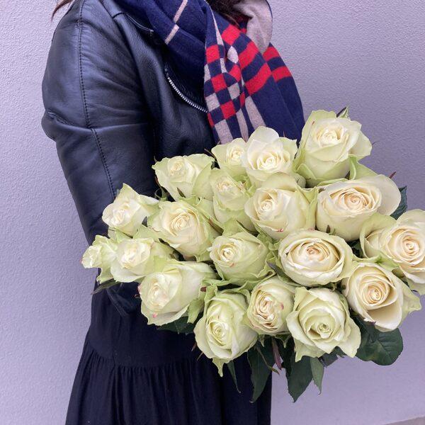 Rozes-baltas-40 cm