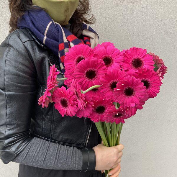 Gerberas mazās-rozā-50 cm